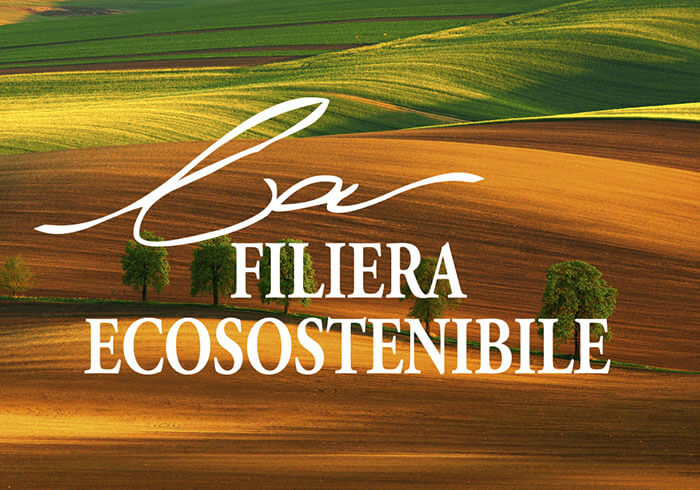 homepage-categories-filiera_eco