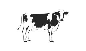 gran_moravia-etichetta_filiera-icon-04
